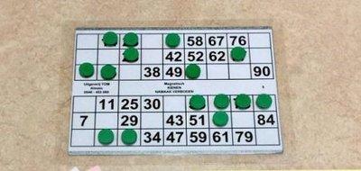 Magnetische kienkaarten. 4 kaarten per A-4 bord. 2 aan elke zijde.